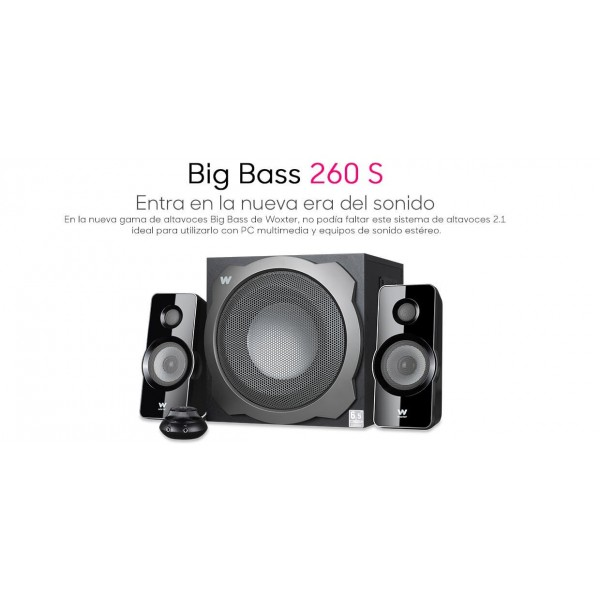 ALTAVOZ WOXTER BIG BASS 260 S